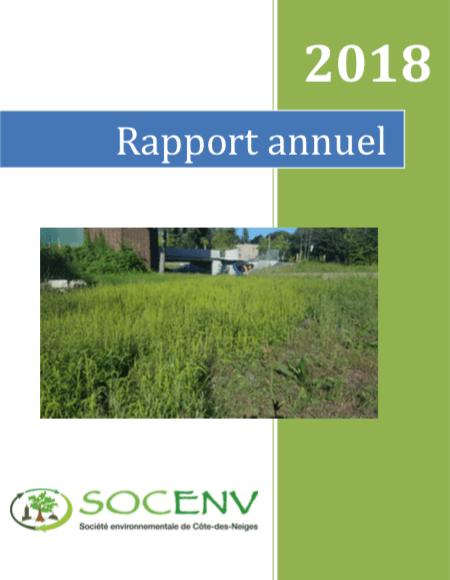 Rapport final Socenv 2018